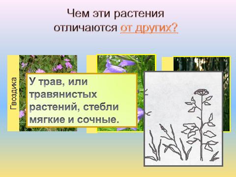 hello_html_59725b04.png