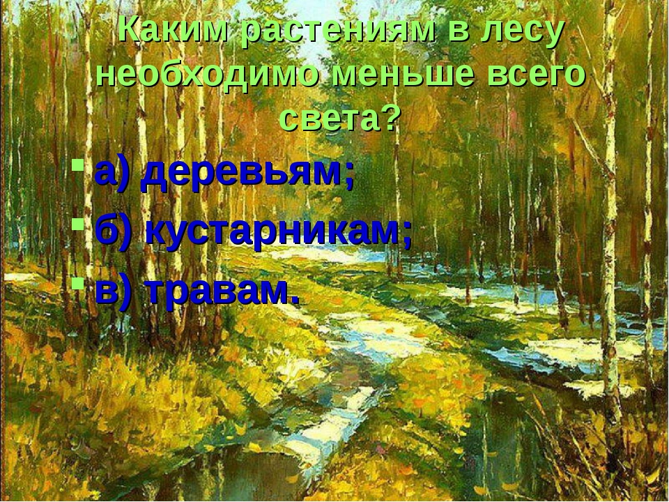 Каким растениям в лесу необходимо меньше всего света? а) деревьям; б) кустарн...