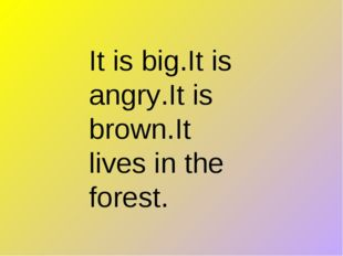 It is big.It is angry.It is brown.It lives in the forest.