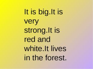 It is big.It is very strong.It is red and white.It lives in the forest.