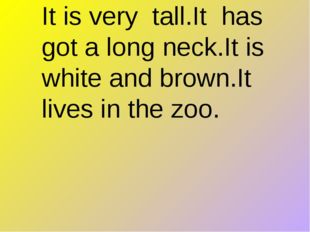 It is very tall.It has got a long neck.It is white and brown.It lives in the