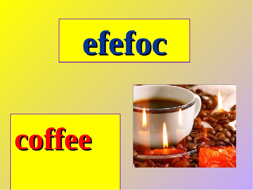 efefoc coffee