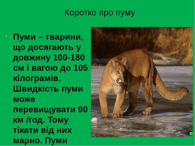 Коротко про пуму Пуми– тварини, що досягають у довжину 100-180 см і вагою до...