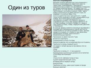 Один из туров Охота в в Азербайджане Великие путешественники востока упоминал