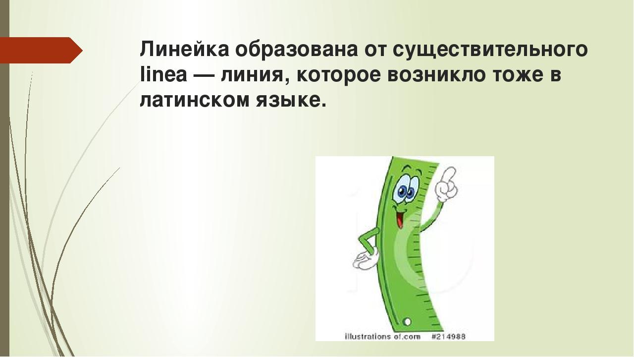 Линейка образована от существительного linea — линия, которое возникло тоже в...