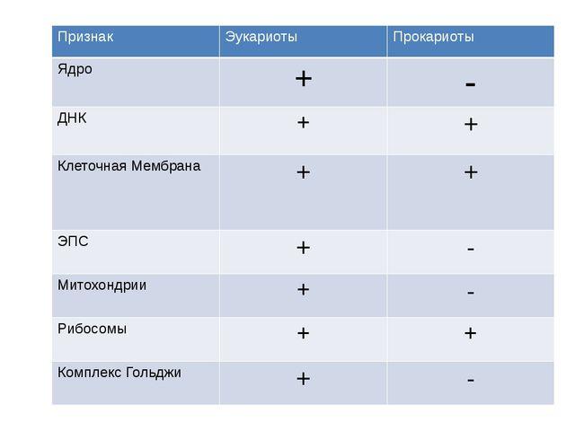 Признак Эукариоты Прокариоты Ядро + - ДНК + + Клеточная Мембрана + + ЭПС + -...
