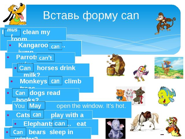 Вставь форму can can must Can May I …. clean my room Kangaroos … jump. Parrot...