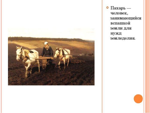 Пахарь — человек, занимающийся вспашкой земли для нужд земледелия.