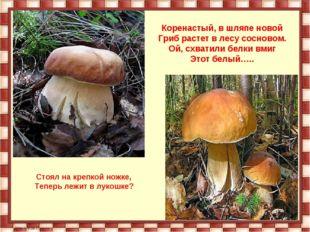 Коренастый, в шляпе новой Гриб растет в лесу сосновом. Ой, схватили белки вми