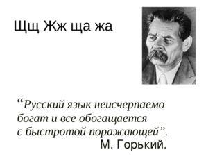 """""""Русский язык неисчерпаемо богат и все обогащается с быстротой поражающей""""."""