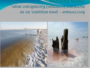 Бессточные – реки впадают, но не вытекают (соленые) Каспийское море, Эльтон,