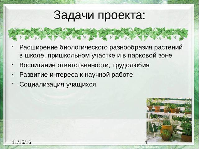 Задачи проекта: Расширение биологического разнообразия растений в школе, приш...