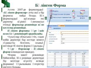 Access 2007-де формалардың «Бөлінген формалар» атты жаңа бір формасы пайда бо