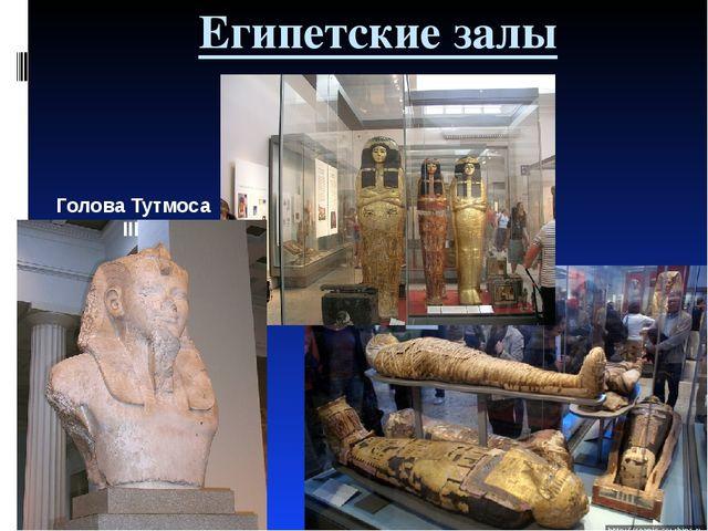 Египетские залы Голова Тутмоса III