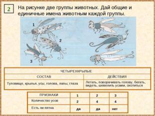 2 На рисунке две группы животных. Дай общие и единичные имена животным каждой
