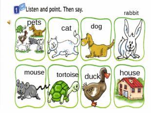 cat duck tortoise mouse pets house dog rabbit