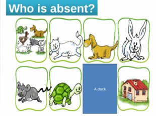 Who is absent? A duck