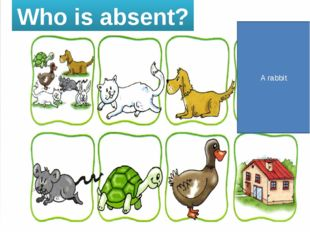 Who is absent? A rabbit
