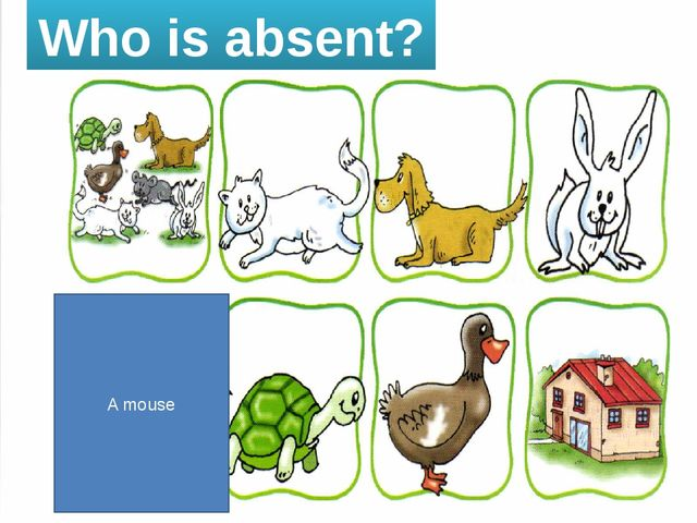 Who is absent? A mouse