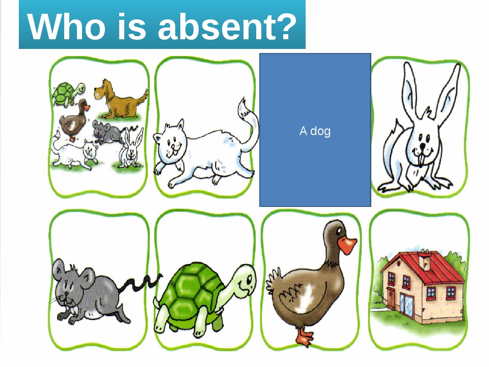 Who is absent? A dog