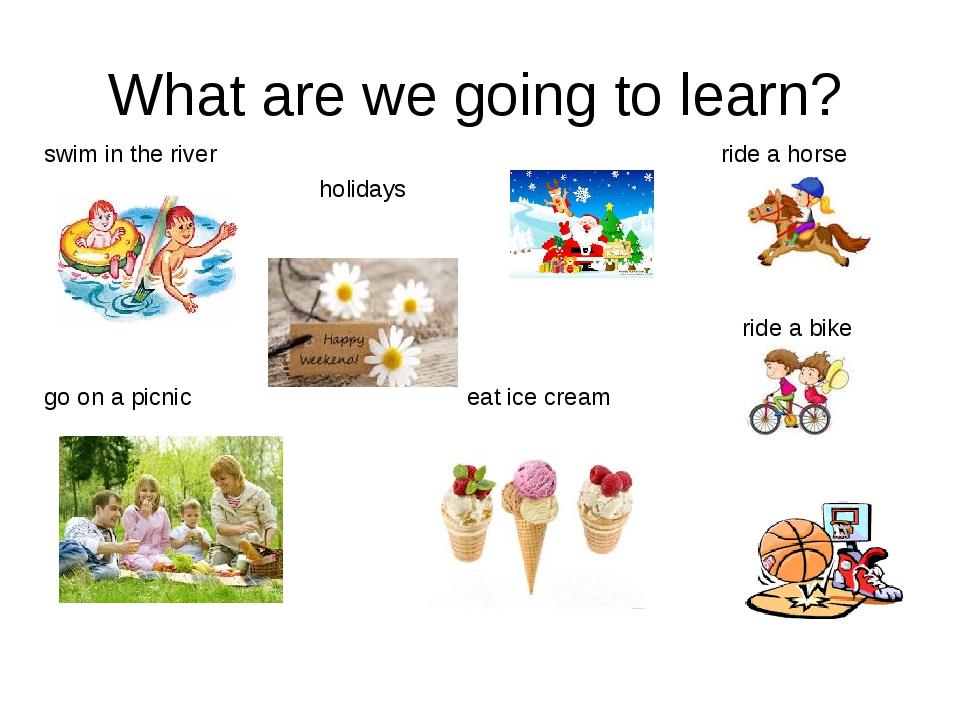 What are we going to learn? swim in the river ride a horse holidays ride a bi...