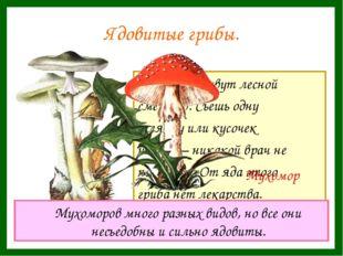 Ядовитые грибы. Этот гриб зовут лесной смертью. Съешь одну шляпку или кусочек