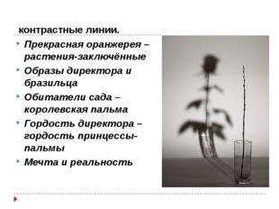 контрастные линии. Прекрасная оранжерея – растения-заключённые Образы директ