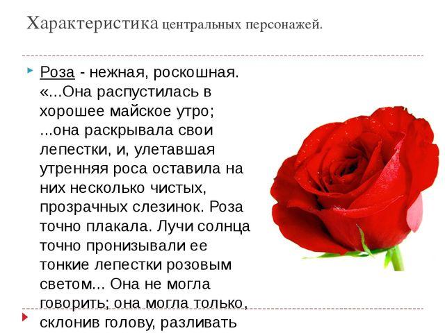 Характеристика центральных персонажей. Роза- нежная, роскошная. «...Она расп...