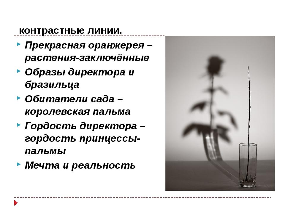 контрастные линии. Прекрасная оранжерея – растения-заключённые Образы директ...