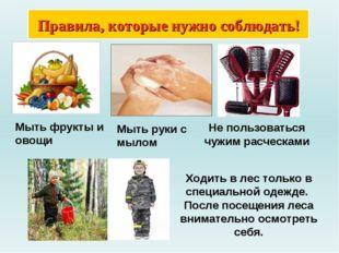 Правила, которые нужно соблюдать! Мыть фрукты и овощи Не пользоваться чужим р