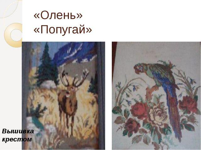 «Олень» «Попугай» Вышивка крестом