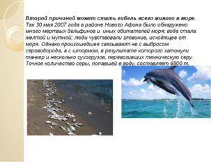 Второй причиной может стать гибель всего живого в море. Так 30 мая 2007 года