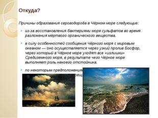 Откуда? Причины образования сероводорода в Чёрном море следующие: из-за восст
