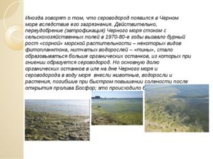 Иногда говорят о том, что сероводород появился в Черном море вследствие его з