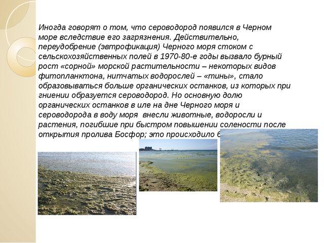 Иногда говорят о том, что сероводород появился в Черном море вследствие его з...