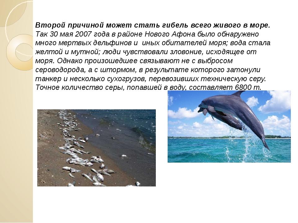 Второй причиной может стать гибель всего живого в море. Так 30 мая 2007 года...