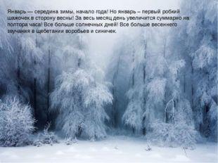 Январь — середина зимы, начало года! Но январь – первый робкий шажочек в сто