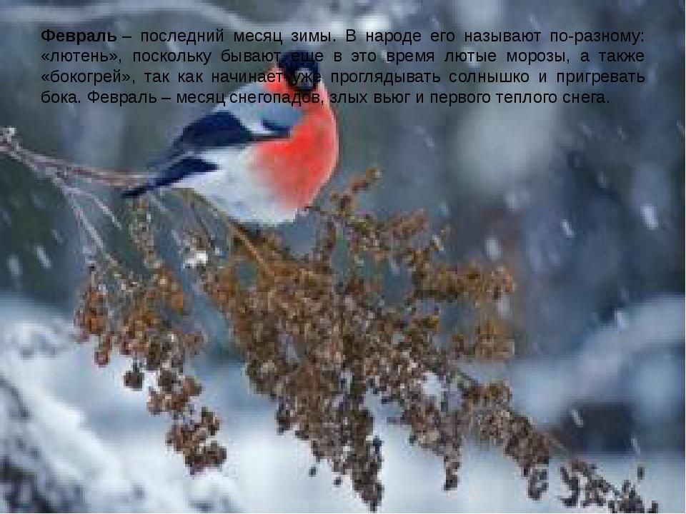 Февраль– последний месяц зимы. В народе его называют по-разному: «лютень», п...