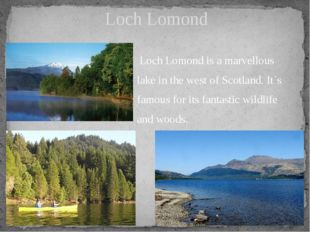 Loch Lomond is a marvellous lake in the west of Scotland. It`s famous for it