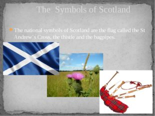 The national symbols of Scotland are the flag called the St Andrew`s Cross, t