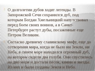 О долголетии дубов ходят легенды. В Запорожской Сечи сохранился дуб, под кото