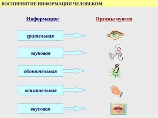 ВОСПИРИЯТИЕ ИНФОРМАЦИИ ЧЕЛОВЕКОМ Информация: Органы чувств