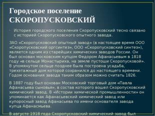 Городское поселение СКОРОПУСКОВСКИЙ История городского поселения Скоропусковс
