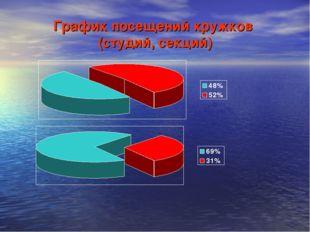 График посещений кружков (студий, секций)