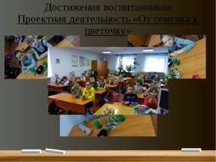 Достижения воспитанников Проектная деятельность «От семечка к цветочку»