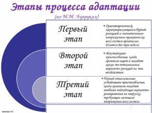 Этапы процесса адаптации (по М.М. Бузруких)