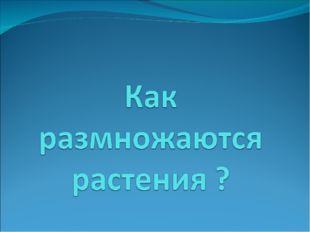 МБОУ СШ №3 г. Павлово Нижегородской обл. Ларионова В. Б.