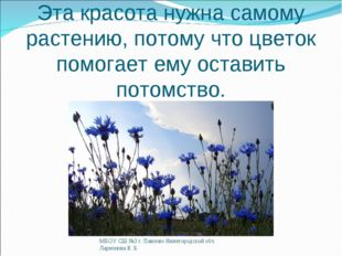 Эта красота нужна самому растению, потому что цветок помогает ему оставить по