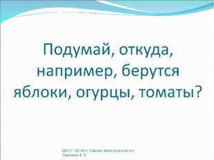 МБОУ СШ №3 г. Павлово Нижегородской обл. Ларионова В. Б. МБОУ СШ №3 г. Павлов