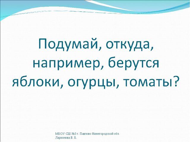 МБОУ СШ №3 г. Павлово Нижегородской обл. Ларионова В. Б. МБОУ СШ №3 г. Павлов...